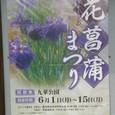 花菖蒲まつりポスター(2009年)