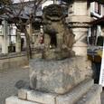 春日神社の狛犬(右)