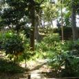 又木茶屋の枯山水庭園