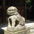 長谷神社の狛犬