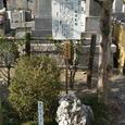 海蔵寺境内にある「さざれ石」