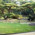 和館から見た庭園