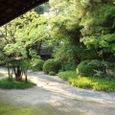 和館の裏庭