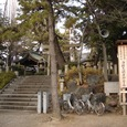 熊野神社参道